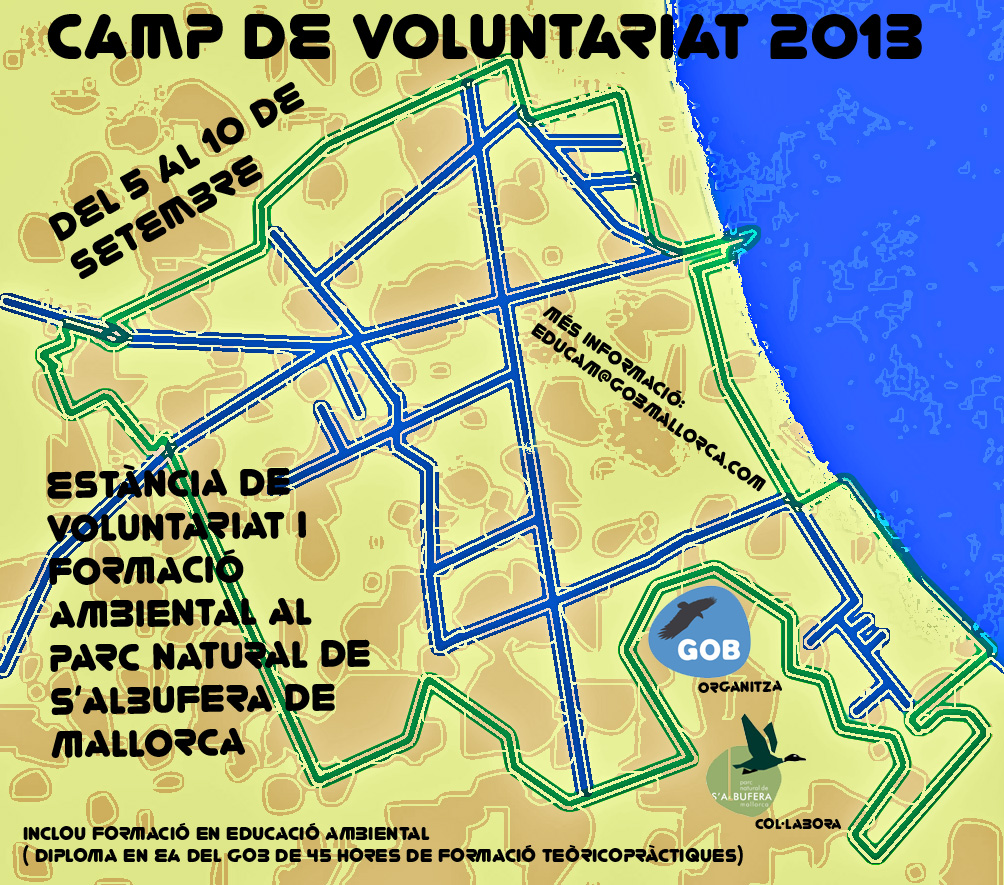 Camp voluntariat 2013