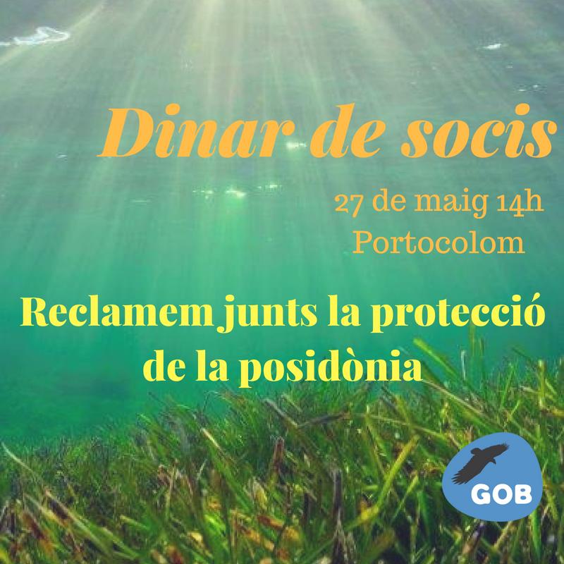 Dinar socis/es del GOB (27-05-18)