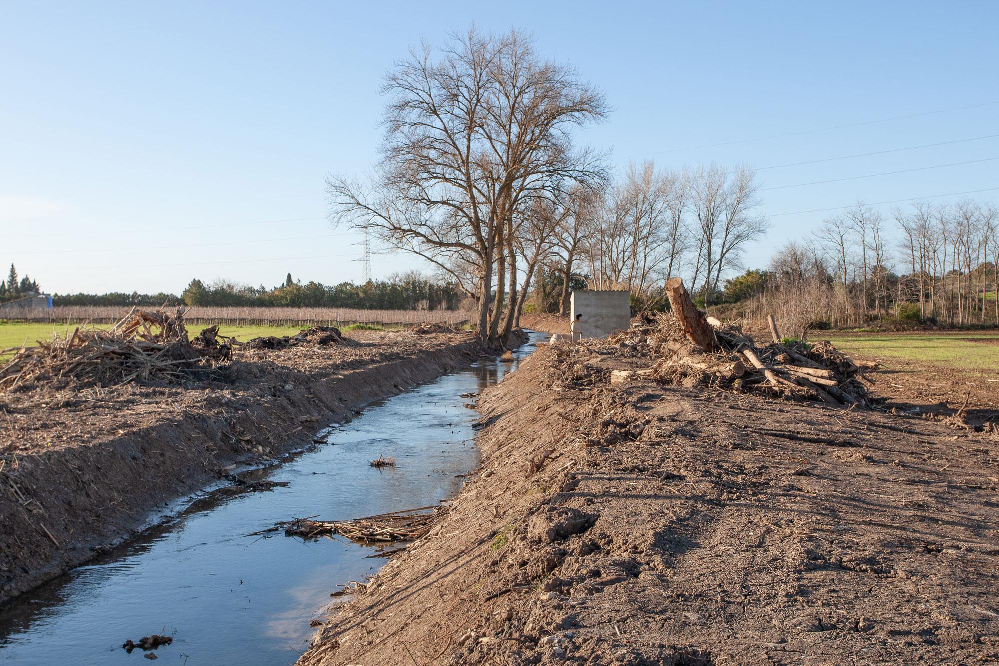 Terraferida y GOB denuncian el desastre en el torrente de Na Borges ante la Comisión Europea
